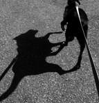 848229_Dog-Shadow_400-143x150