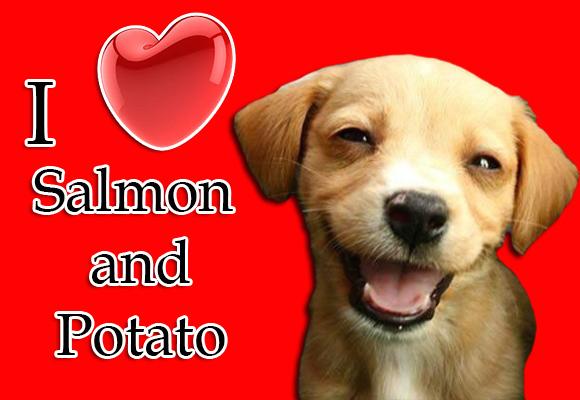 ILoveSalmon