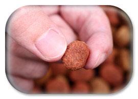 dog food fingers
