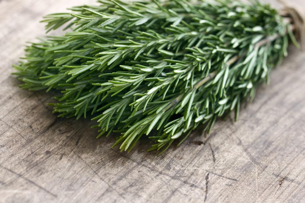bigstock-Green-Fresh-Rosemary-Herbs-48887360-1024x682